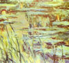 reflets sur l'eau- Monet